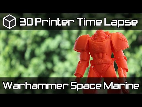 3D Printer Time Lapse - 3D Printed Warhammer Space Marine
