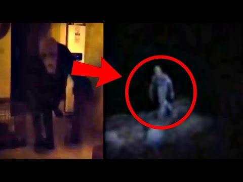 25 Scariest Creature Videos of All Time