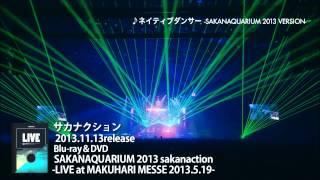 2013年11月13日リリースLIVE Blu-ray & DVD「SAKANAQUARIUM 2013 sakana...