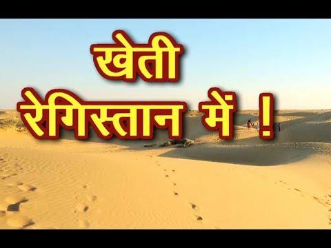 कैसे करें खेती बिना मिट्टी और कम पानी मे / इस technique से रेगिस्तान मे कर सकते है Kheti