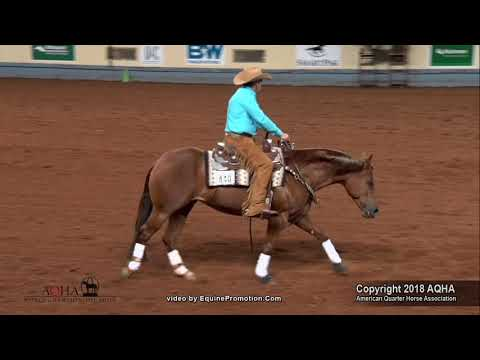Bridless Reining - Dan Huss & Ms Dreamy