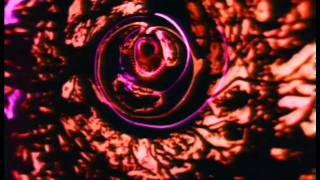 Dir: 松本俊夫 / MATSUMOTO TOSHIO 1978 'TOSHIO MATSUMOTO EXPERIMENTA...
