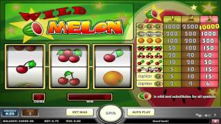 Wild Melon™ slot machine by Play