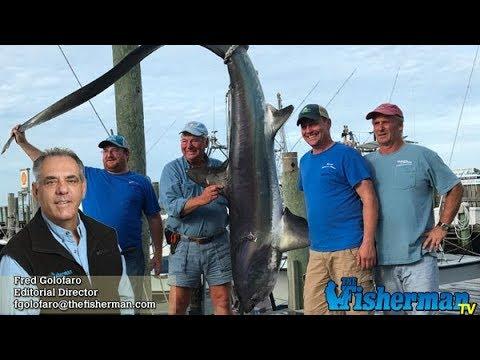 October 12, 2017 Long Island Metro Fishing Report with Fred Golofaro