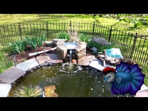 Diy pond filter under 20 youtube for Koi pond filter diy