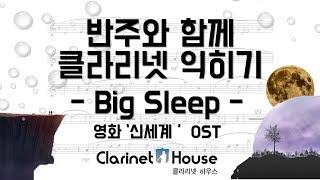 Big Sleep(영화