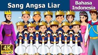 Download Video Sang Angsa Liar | Dongeng anak | Kartun anak | Dongeng Bahasa Indonesia MP3 3GP MP4