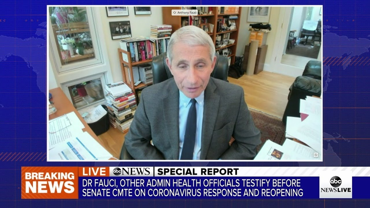 Fauci tells Congress that states face serious consequences if they ...