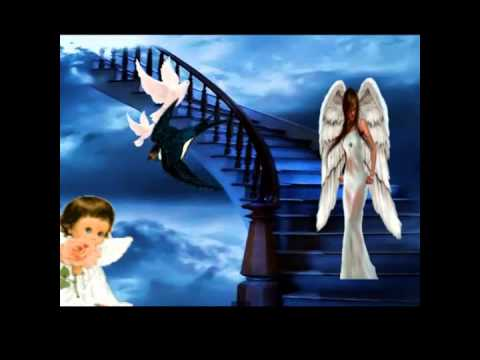 Paroles Le Vol D'un Ange par Céline Dion - …