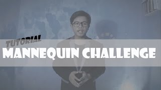 TUTORIAL MAKE A VIDEO MANNEQUIN CHALLENGE