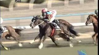 Silk Trouper 2007年2月3日 京都11R Yamashiro Stakes http://db.netkei...