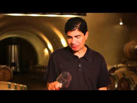 The Capital Grille - Wine Descriptions