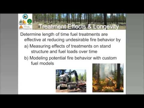 Effectiveness and Longevity of Fuel Treatments in Coniferous Forest Across California