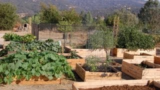Build Your Own Raised Bed Garden For Free!!!
