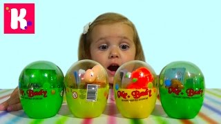 Заводные животные в яйцах/ сюрприз игрушки/ распаковка