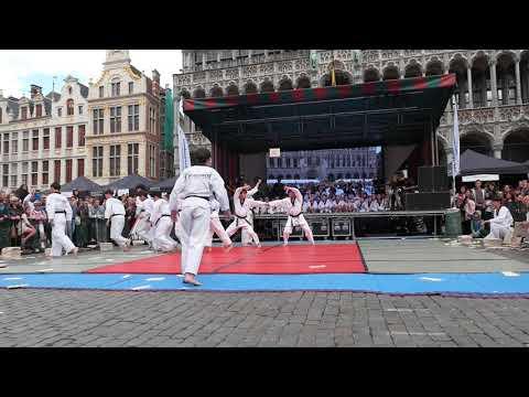 Folklorissimo 2017 Taekwondo Performance