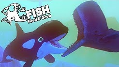Feed and Grow Fish Gameplay German - Größter Orca Wal der Welt