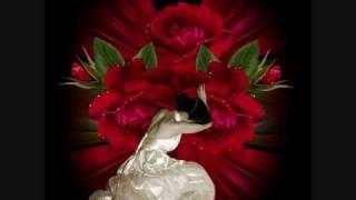 los tucanes de tijuana el virus del amor