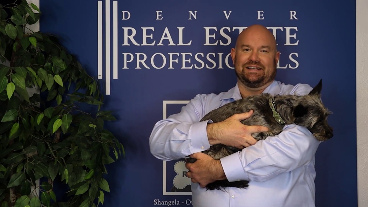 Denver Real Estate Professionals Launches The Series: Chadwick's REAL Tips