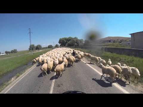 TEIL 1 SEIDENSTRASSE MONGOLEI 2015 - Motorradreise Alleine 22.000km - UNGARN BIS TÜRKEI