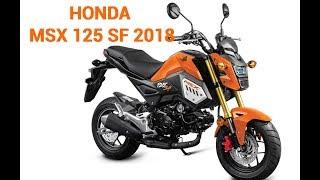 2018 Honda GOM125 | New Honda MSX 125 SF 2018 in Malaysia