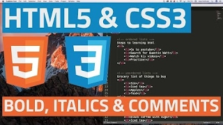 [Javascript Tutorials] HTML5 and CSS3 beginner tutorial 5 - Bold, italics and comments