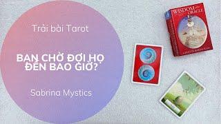 Chọn một tụ bài 🦋 BẠN CHỜ ĐỢI HỌ ĐẾN BAO GIỜ 🦋 Trải bài Tarot