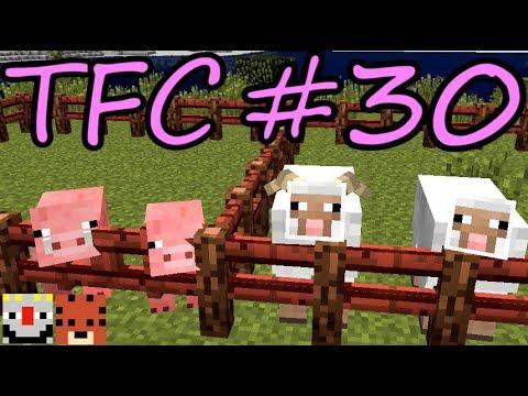 【Minecraft】生きる。#30【TFC実況】