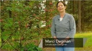 Spring Flower & Vegetable Care : Natural Garden Plans