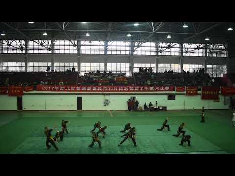 wushu competition Hubei province 2017