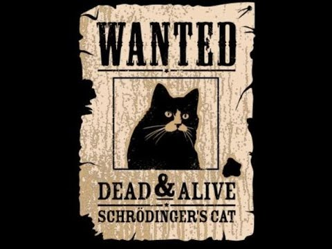 Wanted: Dead or Alive November 10, 2019