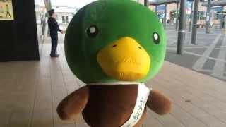 弘前駅前にて、弘前警察署のマスコットキャラクター、さぎかも君です