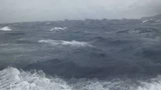 伊豆大島 台風接近中 20091026