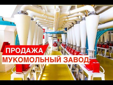 Производство муки элеватор строительство элеватора россия