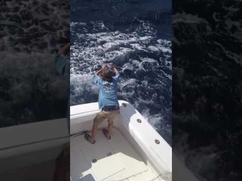 Montauk Offshore Fishing - Call for Charter