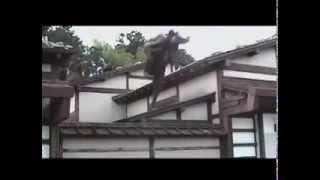 忍術 Ninjutsu - Shinobi - Ninja thumbnail