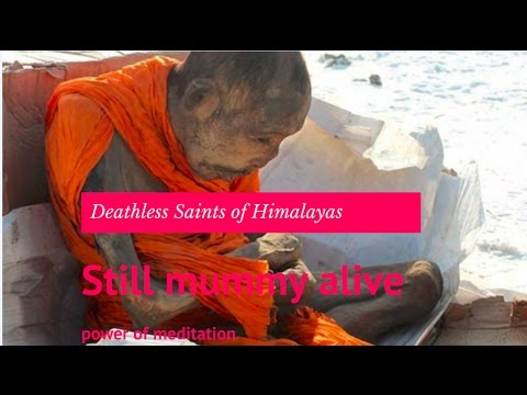 Mysterious and Deathless Saints of Himalayas