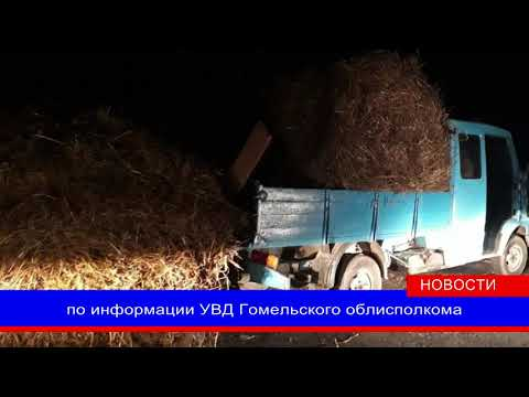 Житель Мозыря попался при перевозке похищенной соломы