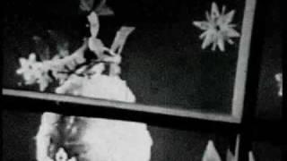 Bounce of the Sugar Plum Fairy (Dance of the Sugar Plum Fairy)