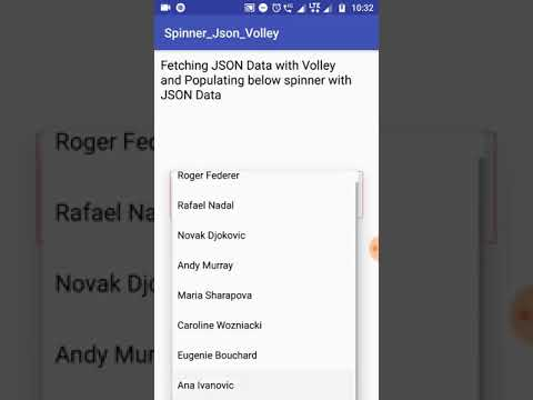 Android Populate Spinner From JSON Using Volley Example