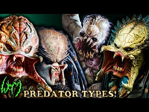Every Type of PREDATOR  YAUTJA