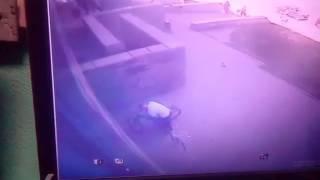 видео База украденных (пропавших) велосипедов.