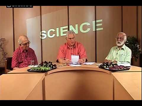 Scientists Cross Swords over future of GM food crops in India