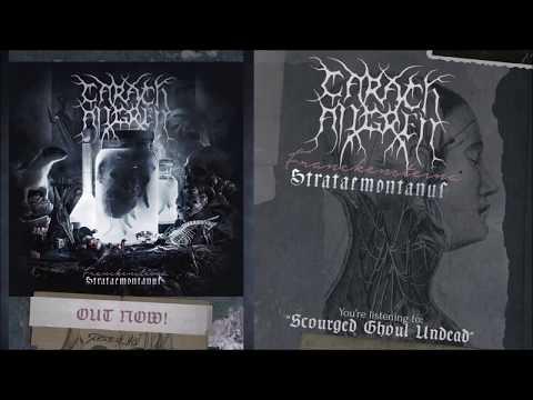 Franckensteina Strataemonus (Album Stream)