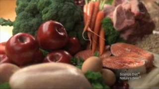Hill's Pet Nutrition Video Food Quality