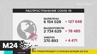 Число случаев COVID-19 в мире превысило 6 млн - Москва 24