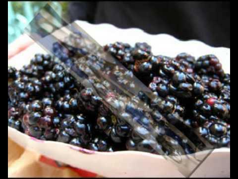 Superfood  Diets For Men Renewed
