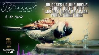 5. EL BUCLE / MARTINEZZZ GRX / PUREZZZA