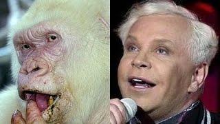 Знаменитости похожи на животных - Celebrities like animals
