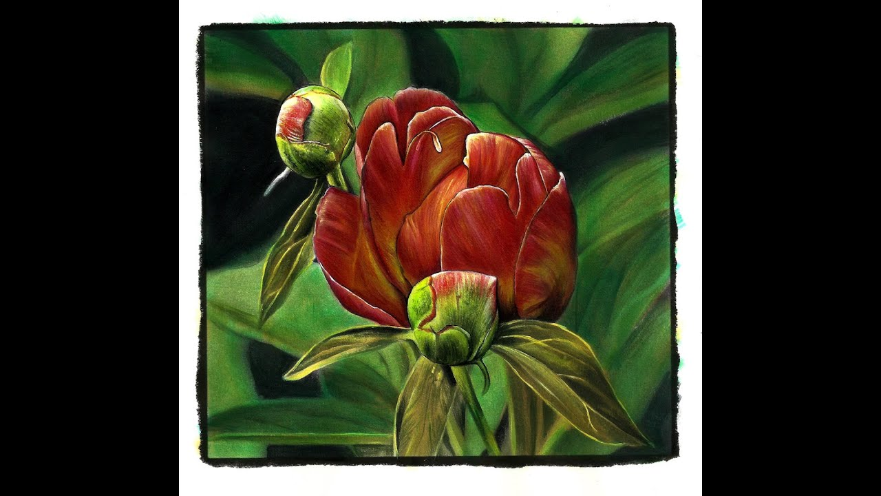 Painting grayscale with julie flores the peony buds from painting grayscale with julie flores the peony buds from beautiful nature youtube dhlflorist Image collections